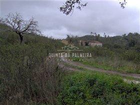 Image No.1-Terre à vendre à Silves
