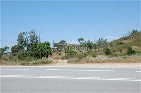 Image No.24-Terre à vendre à Silves