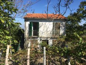 Torricella Peligna, Village House
