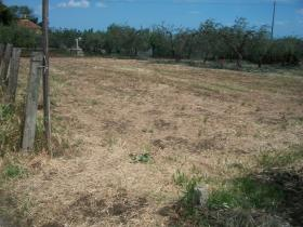 Image No.19-Land for sale