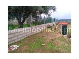 Image No.4-Ferme de 4 chambres à vendre à São Miguel de Acha