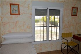 Image No.13-Finca de 4 chambres à vendre à Orihuela