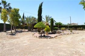 Image No.24-Finca de 4 chambres à vendre à Orihuela