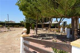 Image No.25-Finca de 4 chambres à vendre à Orihuela