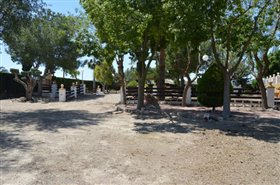 Image No.26-Finca de 4 chambres à vendre à Orihuela