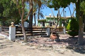 Image No.28-Finca de 4 chambres à vendre à Orihuela