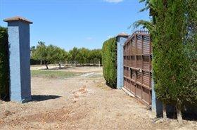 Image No.30-Finca de 4 chambres à vendre à Orihuela