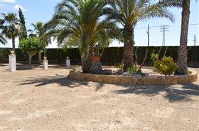 Image No.33-Finca de 4 chambres à vendre à Orihuela