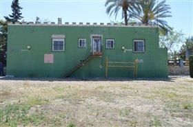 Image No.35-Finca de 4 chambres à vendre à Orihuela
