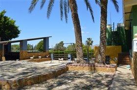 Image No.47-Finca de 4 chambres à vendre à Orihuela