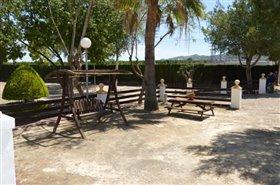 Image No.48-Finca de 4 chambres à vendre à Orihuela