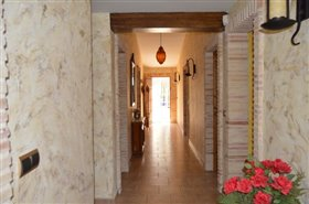 Image No.6-Finca de 4 chambres à vendre à Orihuela