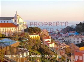 Sao Vicente, Property