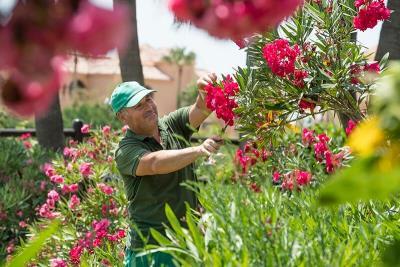 club-la-costa-world-gardeners