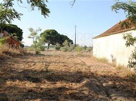 Image No.10-Ferme de 3 chambres à vendre à Pinhal Novo