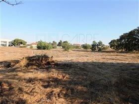 Image No.13-Ferme de 3 chambres à vendre à Pinhal Novo