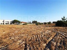 Image No.17-Ferme de 3 chambres à vendre à Pinhal Novo