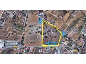 Image No.1-Ferme de 3 chambres à vendre à Pinhal Novo