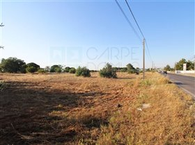 Image No.20-Ferme de 3 chambres à vendre à Pinhal Novo