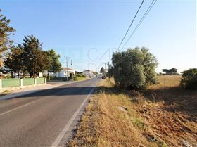 Image No.21-Ferme de 3 chambres à vendre à Pinhal Novo