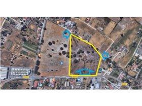 Image No.27-Ferme de 3 chambres à vendre à Pinhal Novo