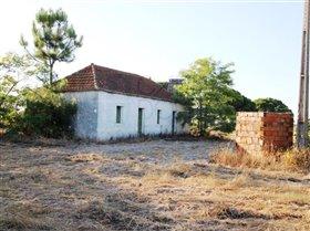 Image No.8-Ferme de 3 chambres à vendre à Pinhal Novo
