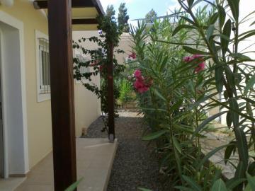 16-Back-Garden2