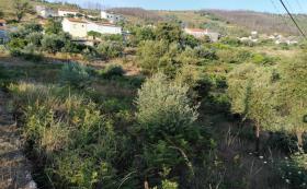 Image No.4-Maison / Villa de 3 chambres à vendre à Cernache do Bonjardim