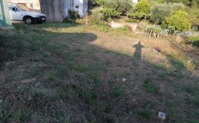 Image No.7-Maison / Villa de 3 chambres à vendre à Cernache do Bonjardim