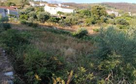 Image No.9-Maison / Villa de 3 chambres à vendre à Cernache do Bonjardim
