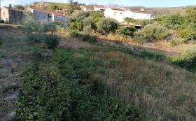 Image No.8-Maison / Villa de 3 chambres à vendre à Cernache do Bonjardim