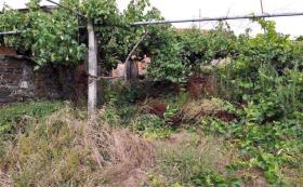 Image No.11-Ferme de 3 chambres à vendre à Sertã