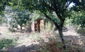 Image No.25-Maison / Villa de 3 chambres à vendre à Sertã