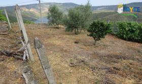 Image No.9-Maison de campagne de 2 chambres à vendre à Oleiros