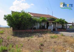 Image No.3-Maison de campagne de 3 chambres à vendre à Mação