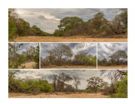 Image No.14-Land for sale