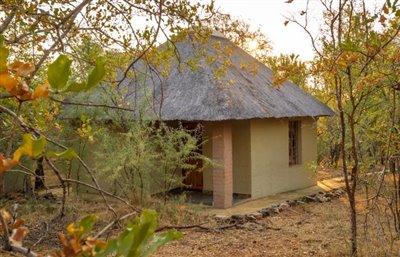 Shikwari-Lodge---20-