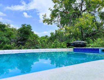 5--Swimming-Pool