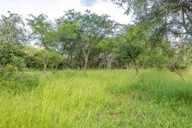 Image No.10-Land for sale
