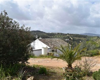 2018121012464000000059finca-for-sale-country-
