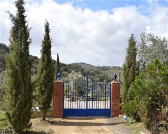 2018121012464700000062finca-for-sale-country-