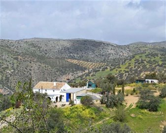2018121012454700000016finca-for-sale-country-