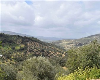 2018121012460800000027finca-for-sale-country-