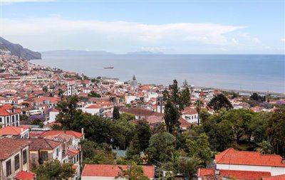 View-from-terrace-to-the-sea-and-Funchal