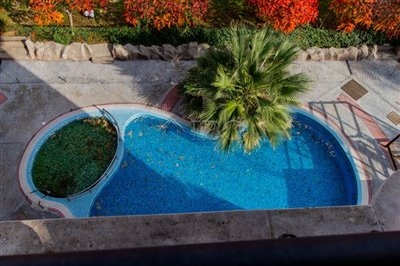 16345640252-bedrooms-aphrodite-3-sunny-beach-