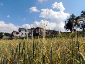 Image No.3-Chalet de 4 chambres à vendre à Caramanico Terme