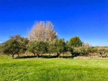 AZ-Italian-Properties-Villa-Luni-Liguria--38-