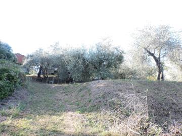 AZ-Italian-Properties-Fosdinovo--25-