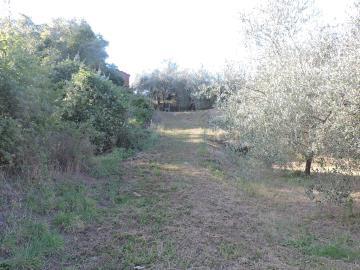 AZ-Italian-Properties-Fosdinovo--26-