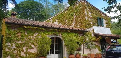 AZ-Italian-Properties-Castelnuovo-Magra--16-